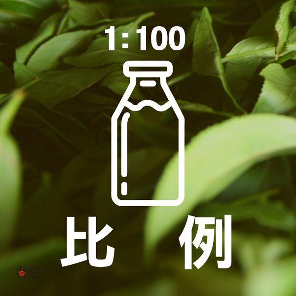 茶葉水比例1:00