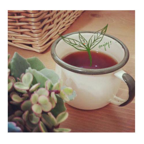 胃不好 可以喝什麼茶?